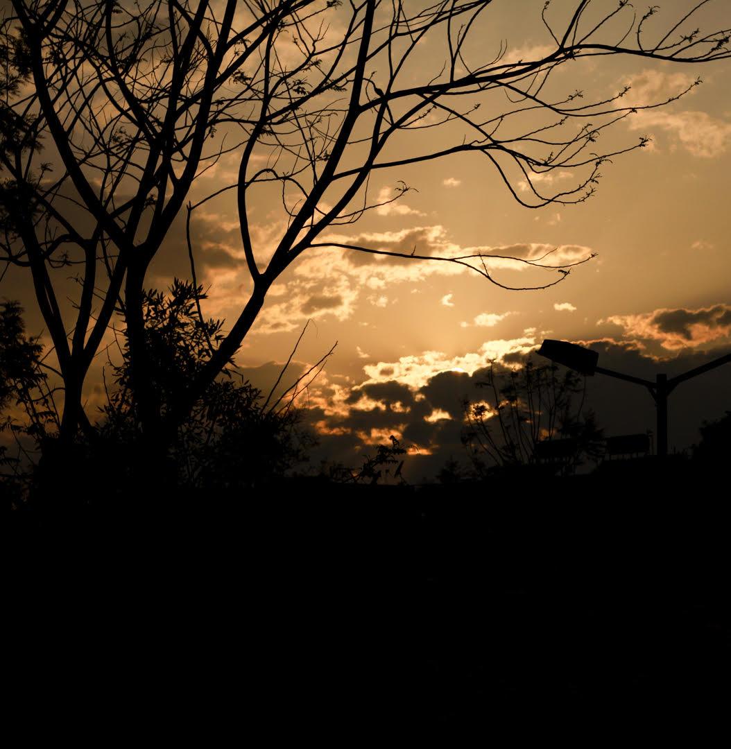 moments of joy - sunset